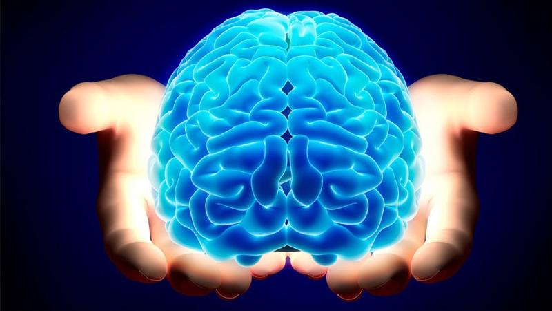 «مغز» را با این روش صحیح و سلامت نگه دارید