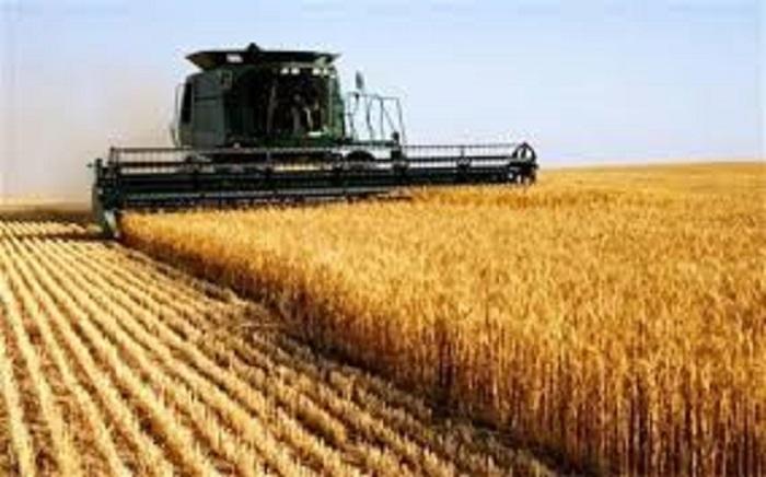 ۱۱ راهکار اقتصاد مقاومتی برای خودکفایی در تولید محصولات اساسی کشاورزی