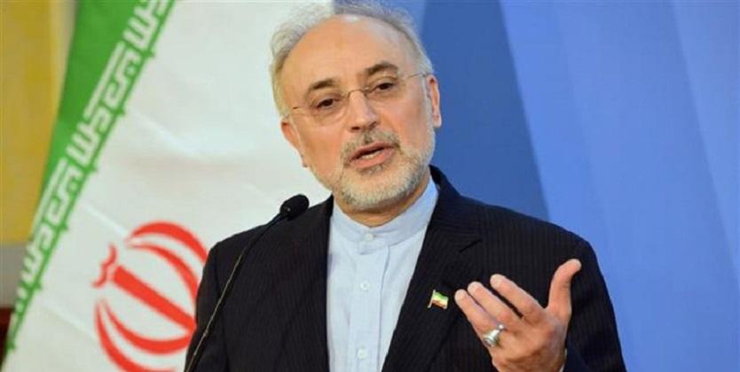 متن بیانیه ایران با آژانس با شورای عالی امنیت هماهنگ شده بود