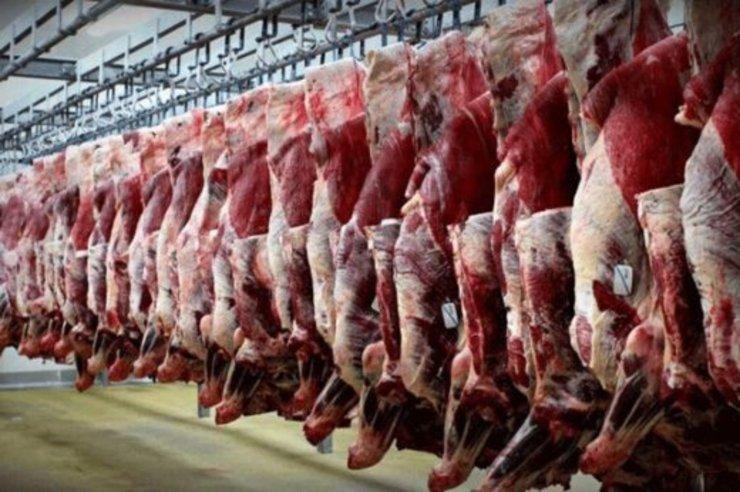 بحران کمبود نهادههای دامی در تولید گوشت قرمز